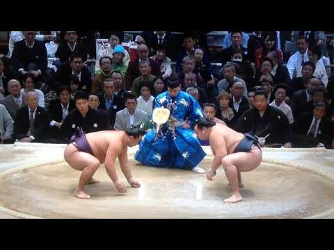 Osaka 2017 - Day FIVE - Kakuryu v Sokokurai