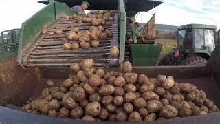 Potato Harvest on our Family Farm (Farm vlog #5)