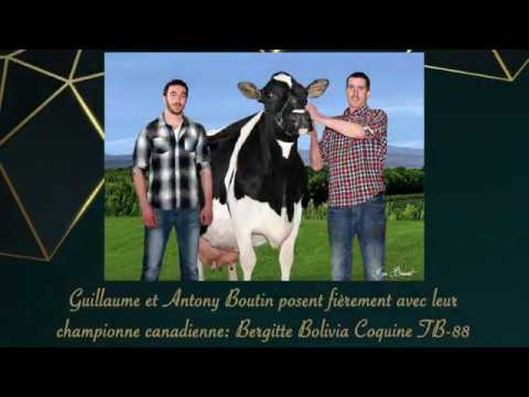 Holstein Québec félicite ses membres !