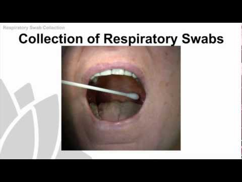 Respiratory Swab Collection Training Video - NSW Health