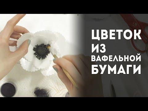 Цветы из вафельной бумаги. Пошаговый мастер-класс