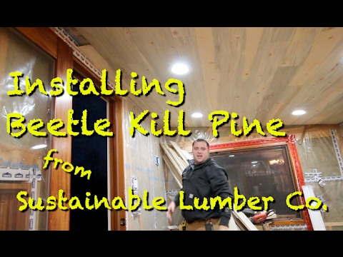 How to install Tongue and Groove Beetle kill pine from Sustainable Lumber Co.