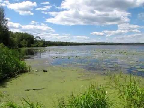 озеро тростенское фото