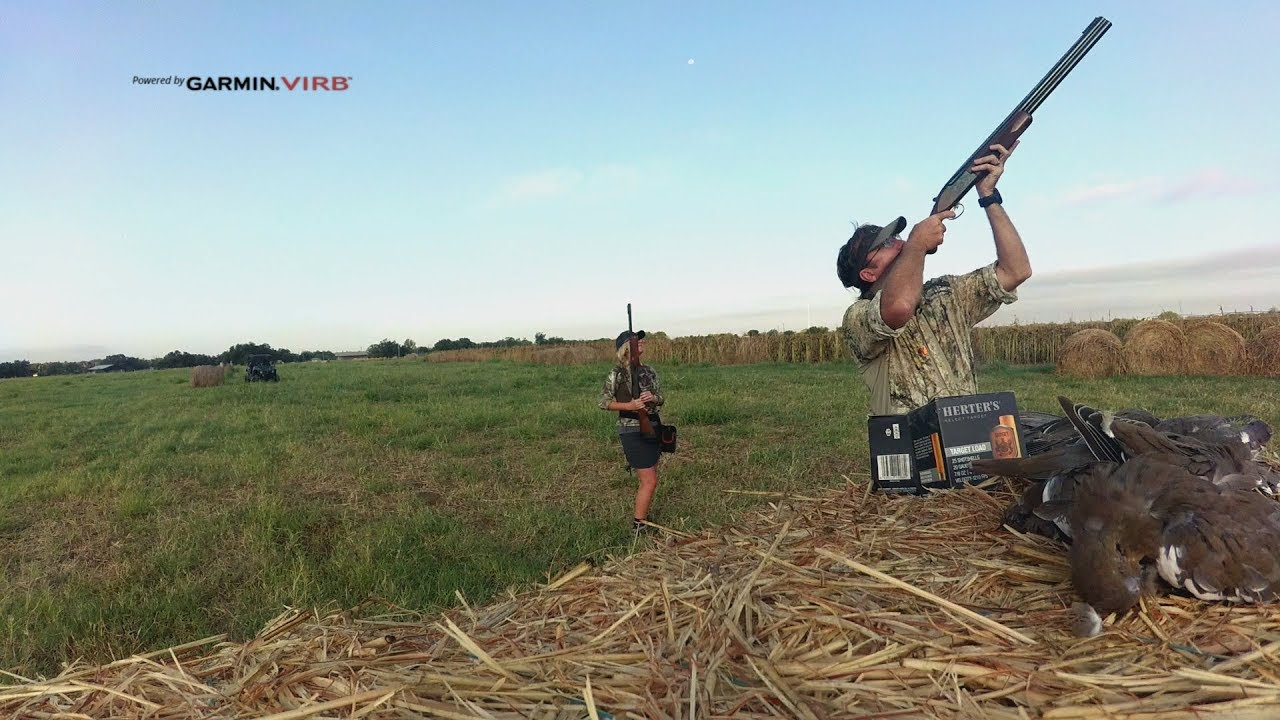 4259c31dacfd5 Dove Hunting - YouTube