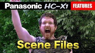 Panasonic HC-X1 Scene Files | The Cinematic Look & Other Styles | Tutorial