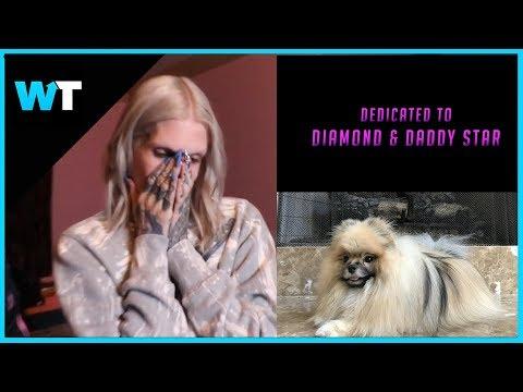 Shane Dawson's EMOTIONAL Tribute to Diamond and Daddy Star ❤️