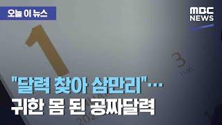 """[오늘 이 뉴스] """"달력 찾아 삼만리""""…"""