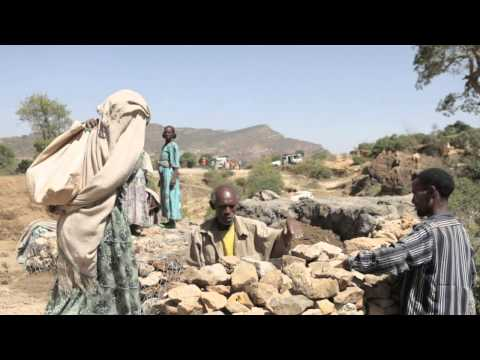 Africa Weekly - 07/10/2015