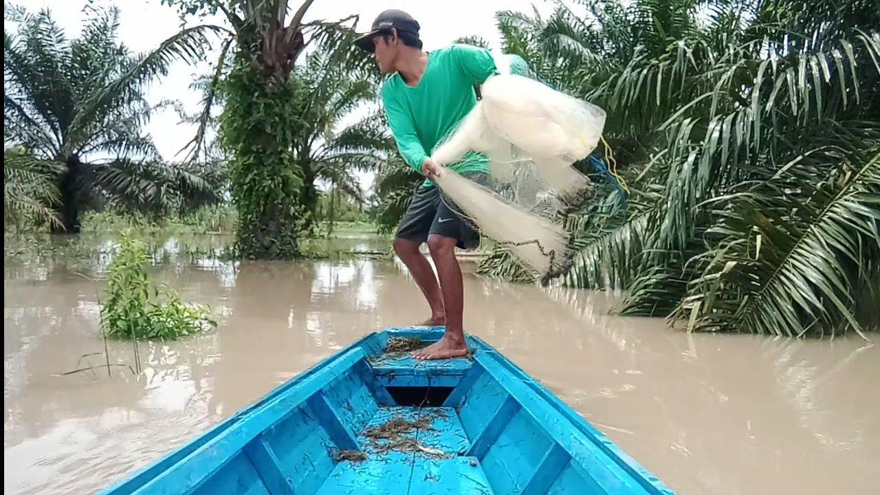 Download jala ikan pakai perahu di saat banjir/fishing nets