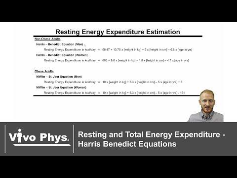 Energy Expenditure Harris Benedict Estimation Equations