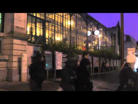 パリ 12/30 2014 Versailles Rive Gauche gang stalking