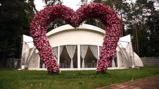 #Свадьбы Vip-шатры на б/о