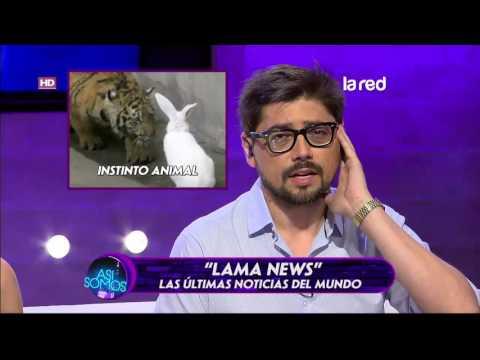 """Conoce los virales del día en """"Lama News"""""""