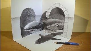 Drawing a White Shark Illusion - 3D Trick Art - Vamos