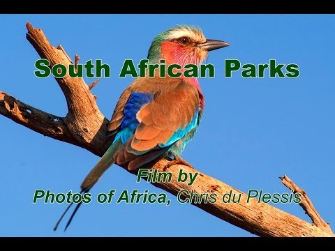 SAN Parks - South Africa Travel Channel 24