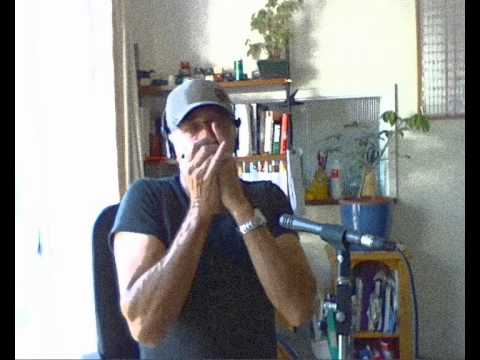 Michelle by The Beatles on Harmonica + How to play Tab - YouTube