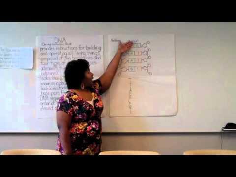 Teach for America Sample Lesson Plan: DNA - YouTube