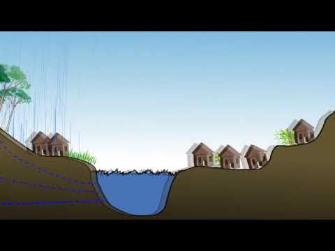 Ecological services animation