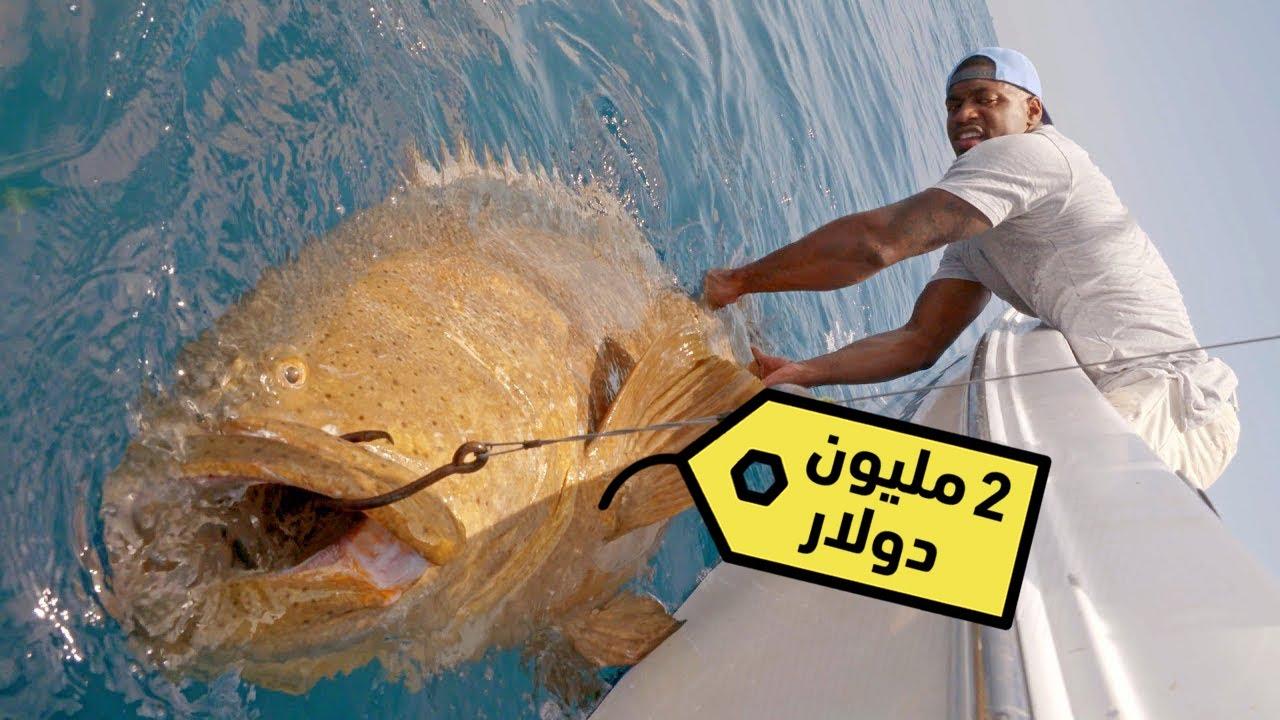 سمكة المليوني دولار.. سوف تصبح مليونيراً اذا استطعت اصطيادها!!