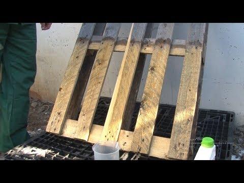 PROSEPT 50 отбеливатель древесины