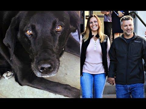 Дочь обвинила отца в домогательствах, но собака помогла спасти его от 50 лет тюрьмы