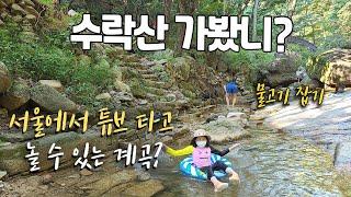 서울에도 튜브타고 놀 수 있는 계곡이 있다고?...수락…