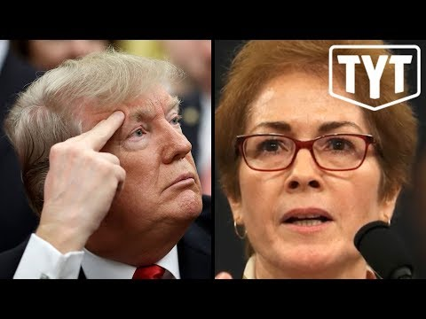 Trump Intimidates Witness DURING Testimony