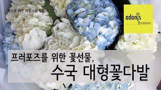 로맨틱 프러포즈를 위한 수국대형꽃다발
