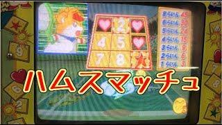 【メダルゲーム】ハムスマッチュ【JAPAN ARCADE】