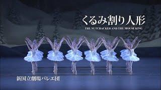 3分でわかる!バレエ『くるみ割り人形』|新国立劇場バレエ団