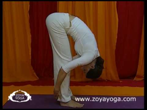 Introduction to Yoga: Standing Forward Bend (Uttanasana)