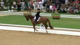 CDI 4* Schindlhof Fritzens, 06 Grand Prix Spezial, Isabell Werth auf Bella Rose