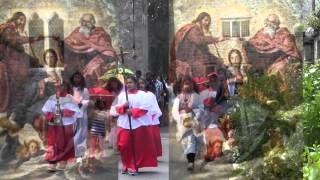Kanyaka Mary Amme Kaaval Maalaghamaare-Binoj Mulavarickal Christian Song- Kester
