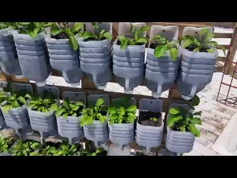 Cultivo vertical para espacios reducidos youtube for Cultivos verticales definicion
