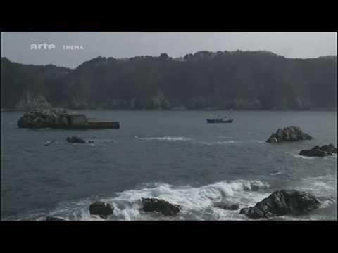 Le monde apres Fukushima - Documentaire Arte - 05.03.2015