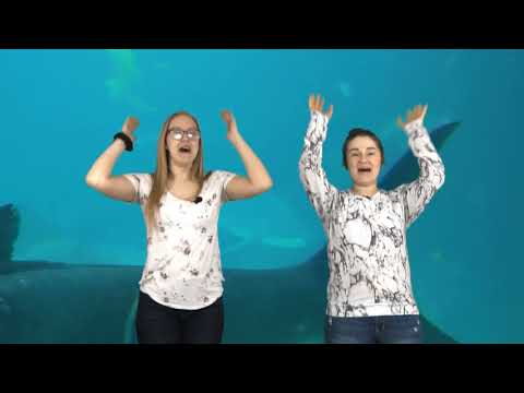 Books of the Bible (Hand Motions) | Kaitlynn & Emily | HIPM