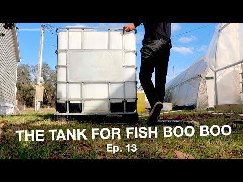 Mineralization Tank For Fish Waste | The Aquaponics God  Ep. 13