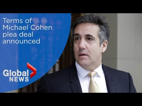 Details of Michael Cohen's plea deal announced