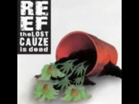 Reef The Lost Cauze - No Worries