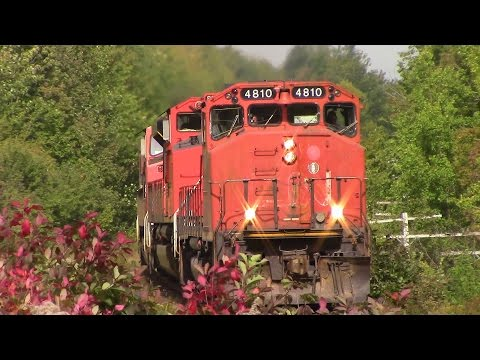 Thumbnail: Very Rare!! GP38-2W 4810 Leading CN Stack Train 120 at Fall River, NS (Sept 30, 2015)