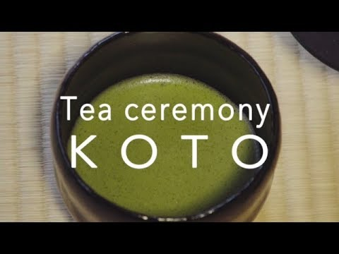 Tea Ceremony Koto in Kyoto Japan