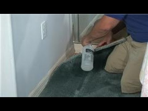 Carpet Cleaning : How To Remove Cat Urine Odor From Carpet