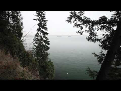 Vancouver's Stanley Park and its natural beauty