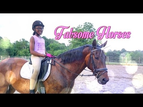 Fabsome Horses:  Johnny the Unicorn