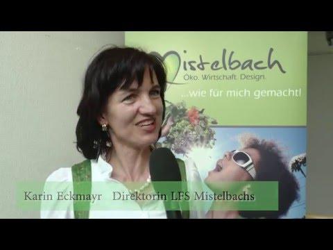 Beste singlebrse friesach, Ebreichsdorf reiche mnner