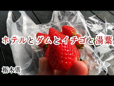 【Vlog】二日目はほぼダム!【栃木旅行②】