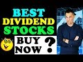 Best Dividend Stocks to Buy in 2019?