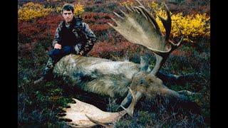 Kill Shots 5. Deer, Bear, Moose, Mountain Goat, Tahr, Chamois, Pigs.