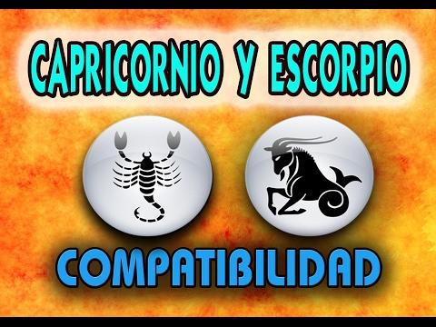 compatibles con scorpio en el amor