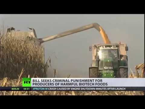 GMO 'Terrorists': Russia seeks criminal punishment for bio-tech companies